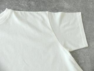 ヴィンテージ天竺 リドーTシャツの商品画像25